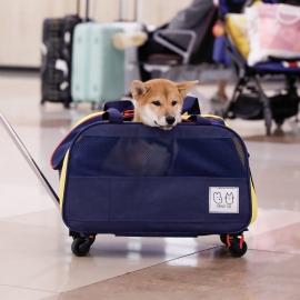 GANGGO 캐리어 펫 가방(멀티확장형)